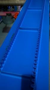 Sidewall Belt 2 (1)